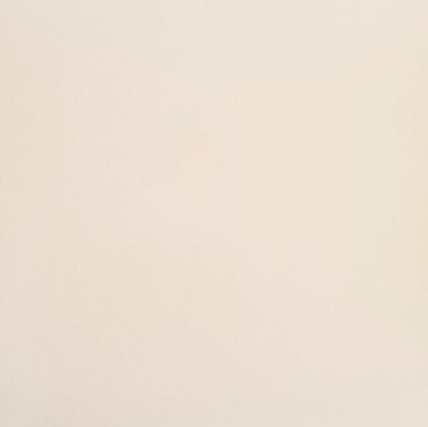 Gresie portelanata Unicolored, 80 x 80 cm 0